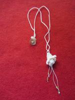 Witte fuchsia met groene kraaltjes